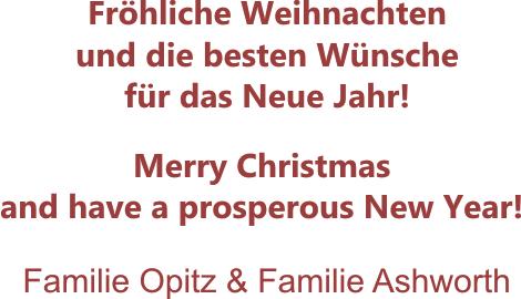 Weihnachtswunsch 2015_3